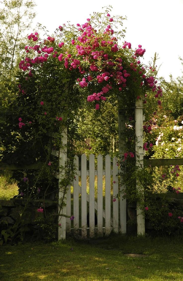 79 best gardens images on Pinterest | Beautiful gardens, Landscaping ...