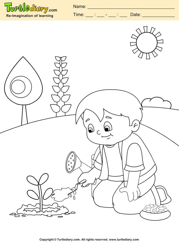 coloring pages of bladderworts plants - photo#28