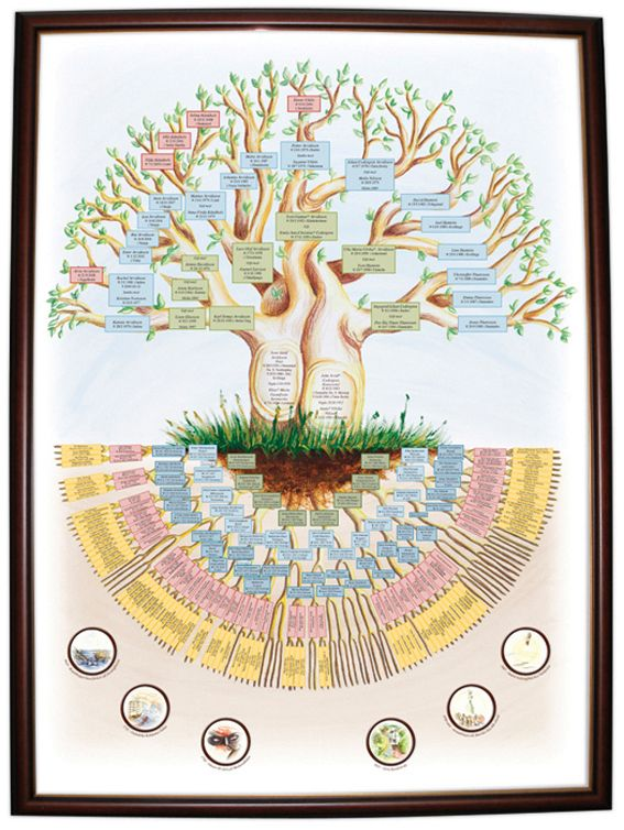 This one's neat too...two trunks intertwined.   This woman hand-paints family trees...they are truly amazing!
