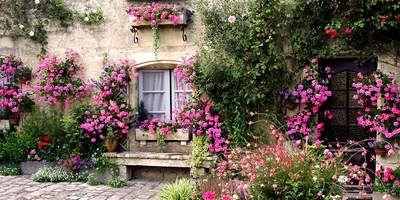 Tuinposter_bloementuin-met-bankje