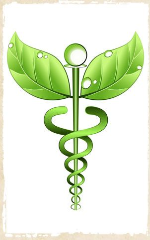 history of naturopathic medicine | The future of naturopathic medicine in Quebec: debate report | The ...