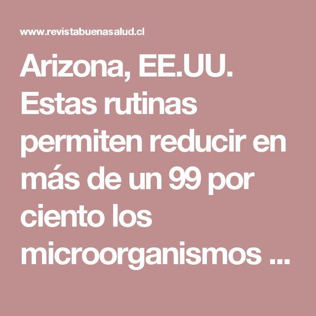 Arizona, EE.UU. Estas rutinas permiten reducir en más de un 99 por ciento los microorganismos en cocinas y baños.  La Pirámide Anti-Gérmenes distingue las areas más c