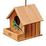 Review for SunGrow Wooden Birdhouse: Fun DIY project for Kids: Double entrance for Easy cle... - Catherine HALLETT  - Blog Booster