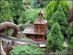 Railroad Gardening is a great use for Miniature and Dwarf Conifers