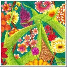 Ms de 25 ideas increbles sobre Dibujo con lpices de color en