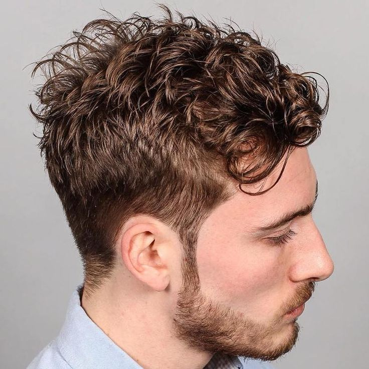 Curly Taper Hairstyle