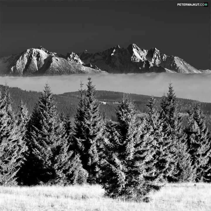 High Tatras - Slovakia by Peter Majkut