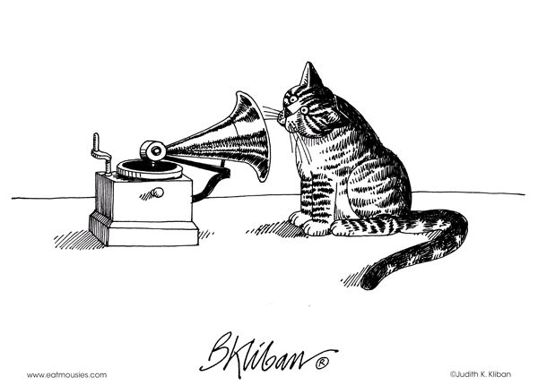 150 Best Klibans Love A Cat Images On Pinterest