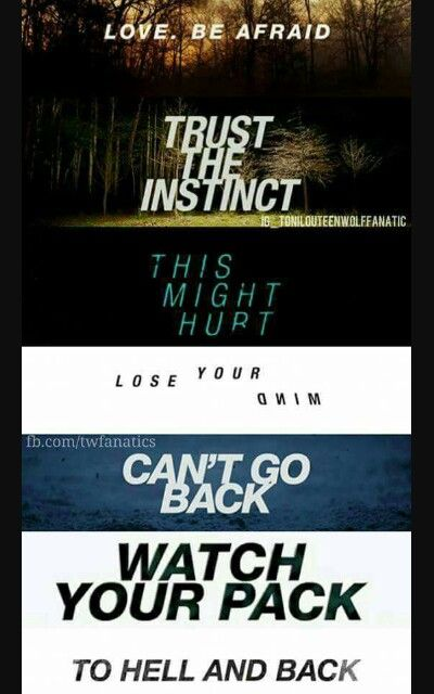 Teen wolf season 1 - 2 - 3a - 3b - 4 - 5a - 5b  Love. Be afraid  Trust the instinct  This might hurt  Lose your mind  Can't go back  Watch your pack  To hell and back