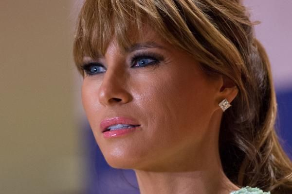 Questions have emerged about Melania's path to citizenship - and 14 other things your might not know.She could be the next…
