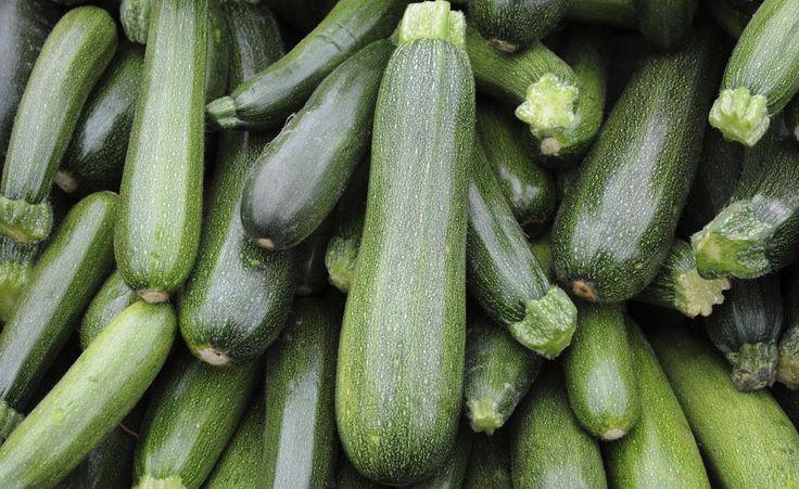 Zucchini: Tricks für eine reiche Ernte -  Zucchini tragen in kalten, verregneten Jahren oft nur wenig Früchte. Mit diesen Tricks können Sie den Ertrag deutlich steigern.