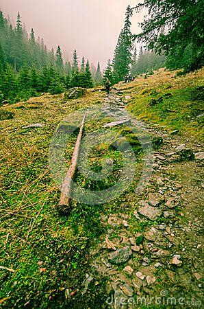Stony Uphill walking in Transylvania`s foggy mountains