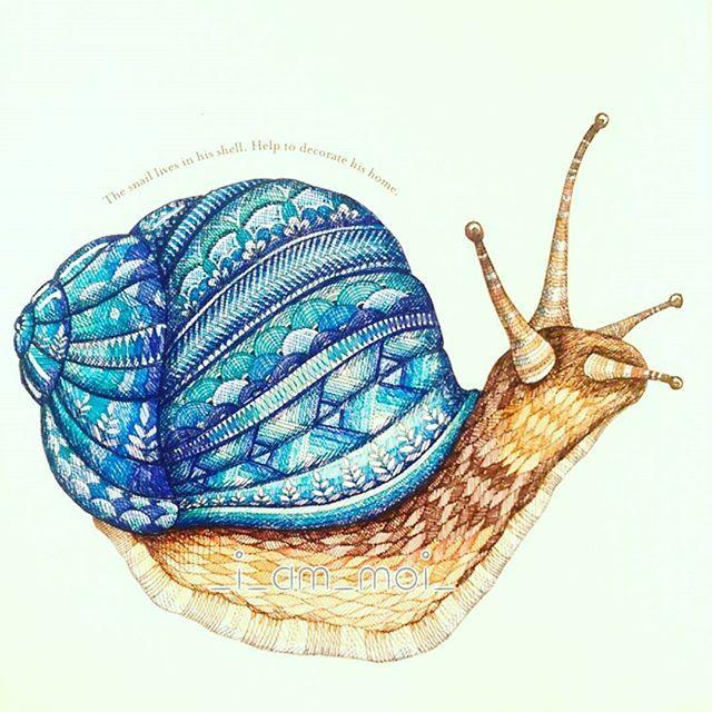 Instagram media _i_am_moi_ - 49/100 Snail. #milliemarotta #keeponcolouring…