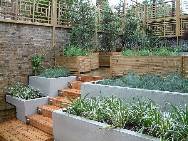 nice split level garden-- Oriental trellis in a modern london garden