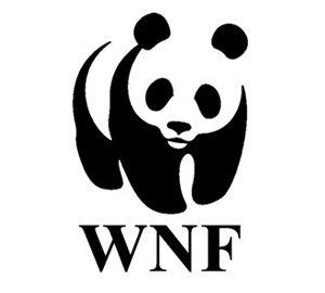 €500 gedoneerd aan het WNF om bedreigde dieren te redden.
