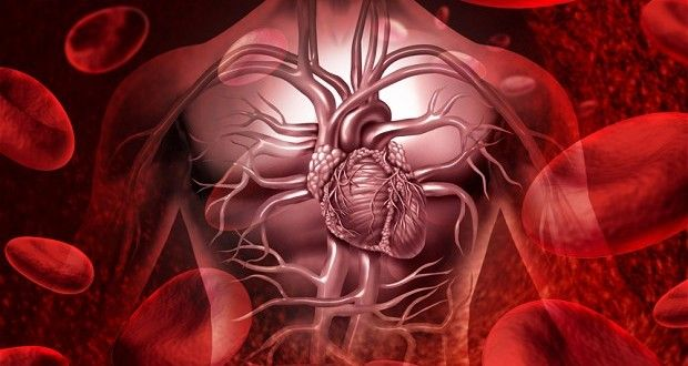 12 possible Heart Symptoms You Should Know