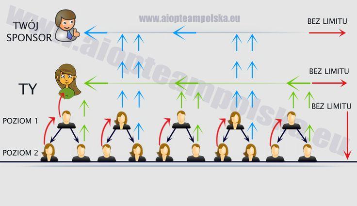 Plan Prowizyjny - All In One Profits | AIOP | TEAM Polska