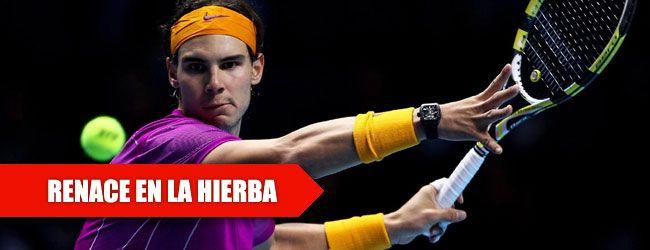 Nadal levanta un trofeo en hierba tras cinco años. El español Rafa Nadal se proclamó campeón del torneo de Stuttgart, donde partía como primer cabeza de serie, al superar al serbio Viktor Troicki por 7-6 y 6-3.
