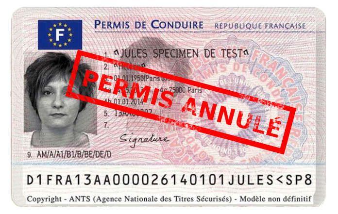 Annulation du permis de conduire | Candidat libre - candidatlibre.net