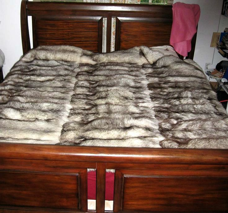 335 Best Images About Blankets On Pinterest Coyotes