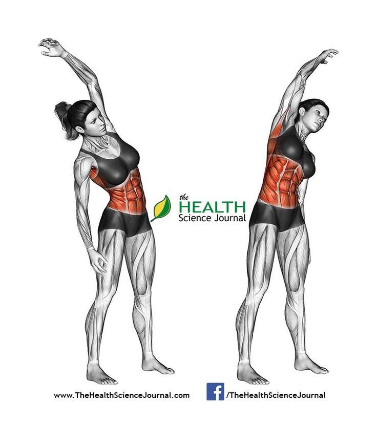 © Sasham | Dreamstime.com - Fitness exercising. Slopes towards. Femal