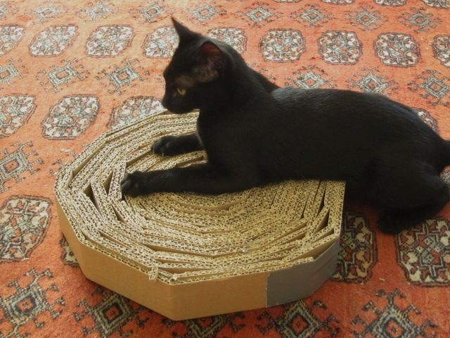 I feel like I should apologize to non-cat people for all the cat-related content we've been generating of late. This should be the last cat post for a while. (At least until the widdle snugum wuggums does something adorable!)We picked up this cat scratcher idea from Modern Cat.