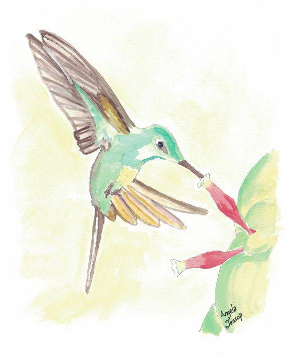 https://www.etsy.com/listing/499728227/empress-brilliant-hummingbird-print