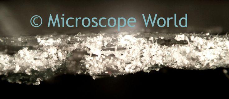 Adhesive edge, 50x, metallurgical microscope https://www.microscopeworld.com/c-449-upright-metallurgical-microscopes.aspx