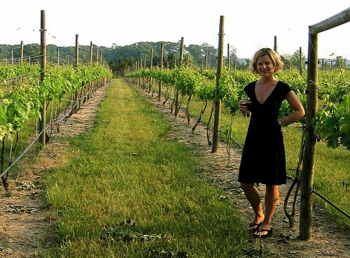 A great way to spend your weekend.: Plum Wine, Wine Beaches, Beaches Plum, Capes, Cars, Vineyard Row, Http Www Natalivineyards Com, Nj Wineries, Bananas Wine
