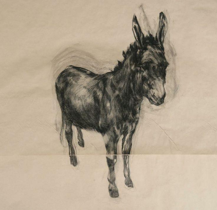 Donkey 2005   Charcoal on Paper   Nicola Hicks