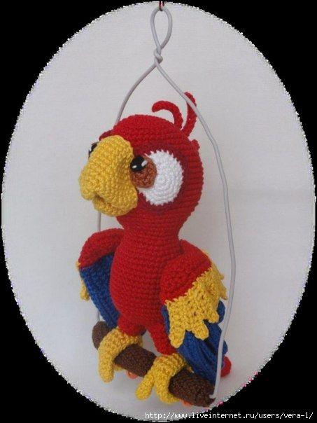 попугай Чили-описание!