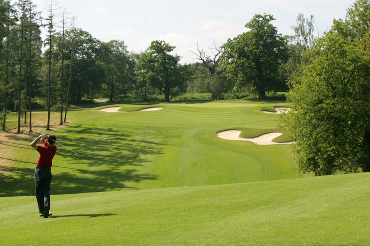 @Teresa O'Day's Golfer - 6th Hole of the Palmerston Course at Brocket Hall.