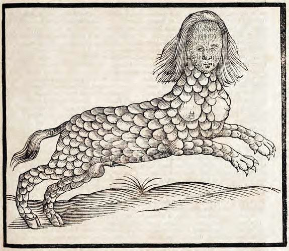 Edward Topsell : Lamia, The History of four-footed beasts and serpents (1658)