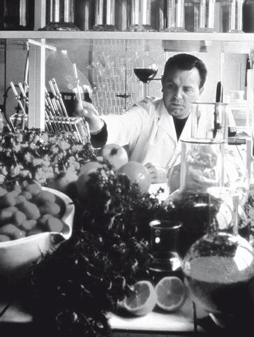 Desde el granero de su casa familiar el señor Yves Rocher crea y comercializa su primera crema a base de ficaria. Poco tiempo después construye su fábrica y empresa en La Gacilly.