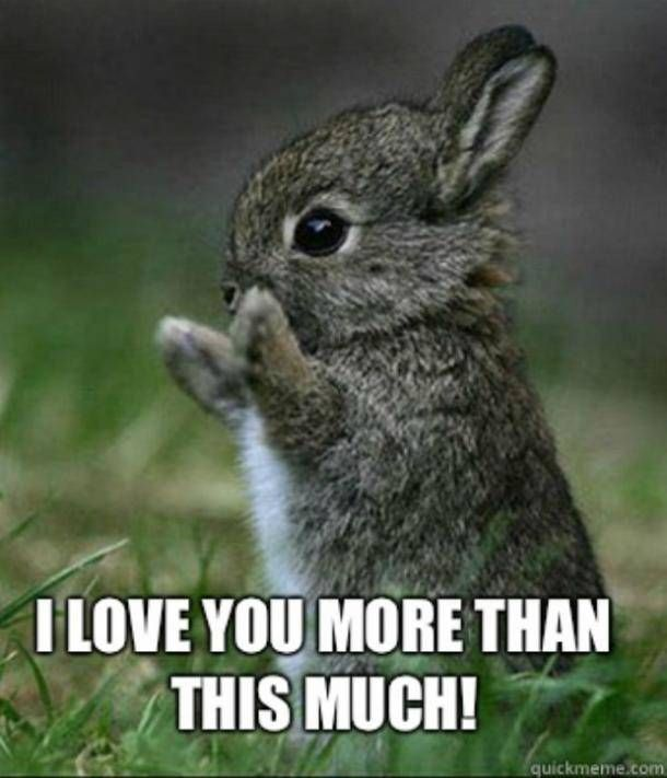 The 40 Best I Love You Memes That Are Cute Funny Romantic All At The Same Time Love You Funny Love You More Meme Love You Meme