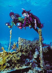 Plongez sous les tropiques grâce au magasin plongée NEMO33