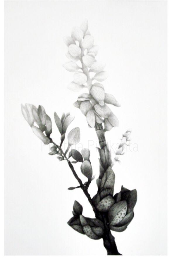 In Bloom 2012 TECHNIQUE : Etching