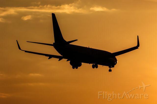 Ryanair B738 (EI-EVL)