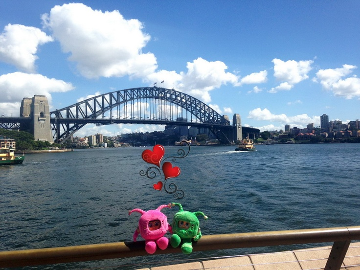 Zimmi found love at Sydney Harbour