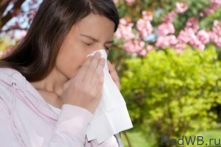 """В статье """"Стены для аллергиков - какие лучше использовать?"""" мы расскажем какие покрытия для стен лучше использовать аллергикам как дома, так и в офисе."""