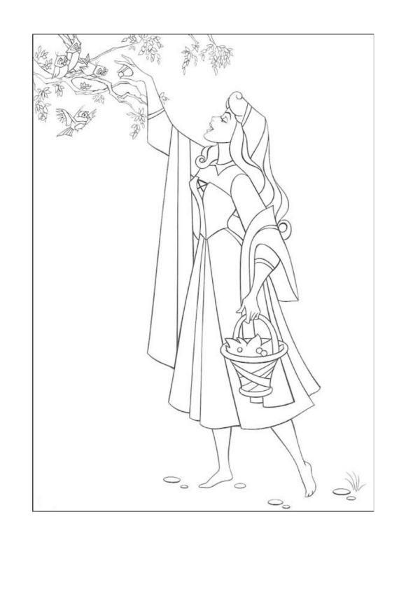 22 best Sleeping Beauty!!! images on Pinterest Disney princess - new disney princess coloring pages sleeping beauty