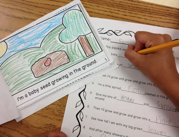 This is just one of the activities from our Plant Bundle of 100 pages of ELA/Math Activities.  There is a rocking fun plant song and this coloring book with the words of the song.  This is one of my kiddos using his song book to fill out the worksheet that is also in the bundle.  There is also 21 word family sorts, 2 missing addend scoot games, and ELA/Math Print and Go Sheets and more! $ #plants#song#scoot games#math#ELA#teaching ideas#TPT#education#spring