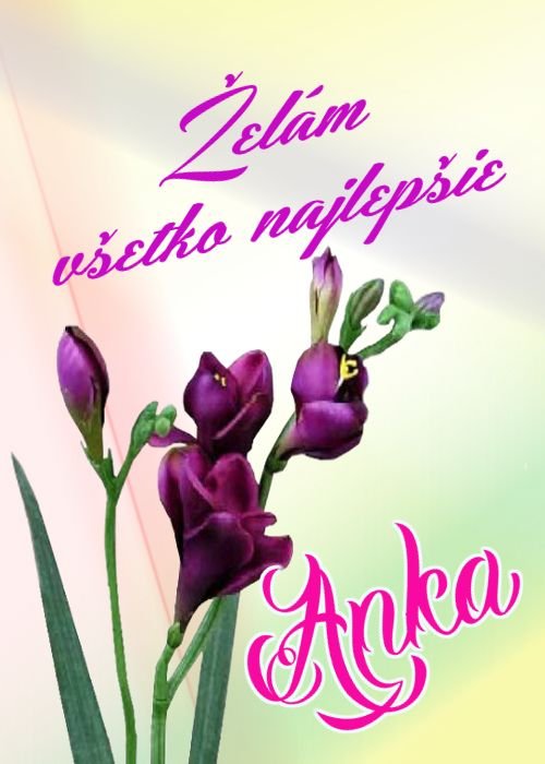 Želám všetko najlepšie  Anka