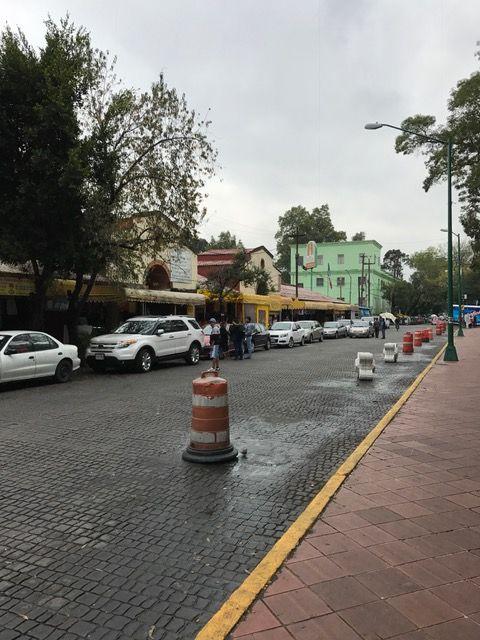 El mercado de Coyoacán es un ícono en el contexto en el que me desenvuelvo, pues aquí convergen multitud de ideas y creencias
