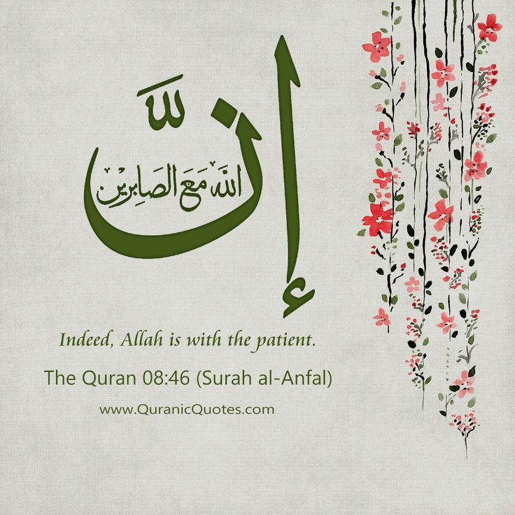 Knowing Sabr 7 Quranic Verses About Patience  Quranic Quotes The Quran 08:46 (Surah al-Anfal)