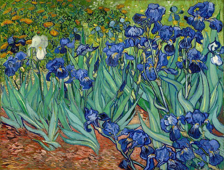 Vincent van Gogh  'Irises' 1889