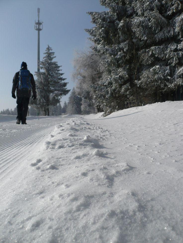 Voraussetzung bei diesen eisigen Temperaturen sind warme Kleidung und immer in Bewegung bleiben...