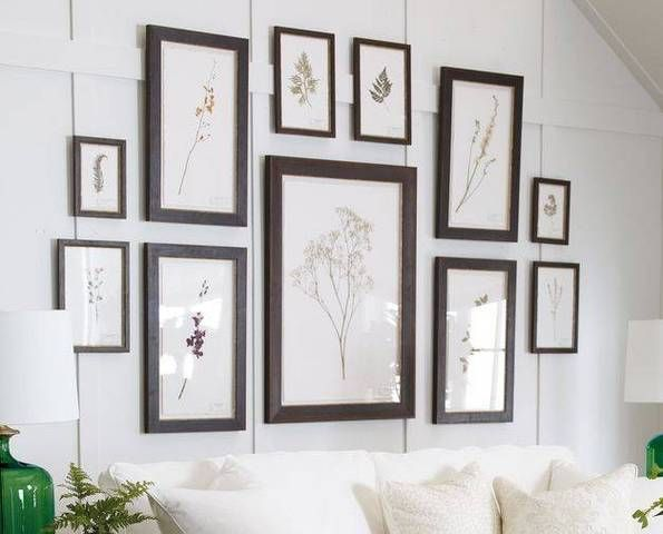 Pressed botanical artwork (the real thing!)