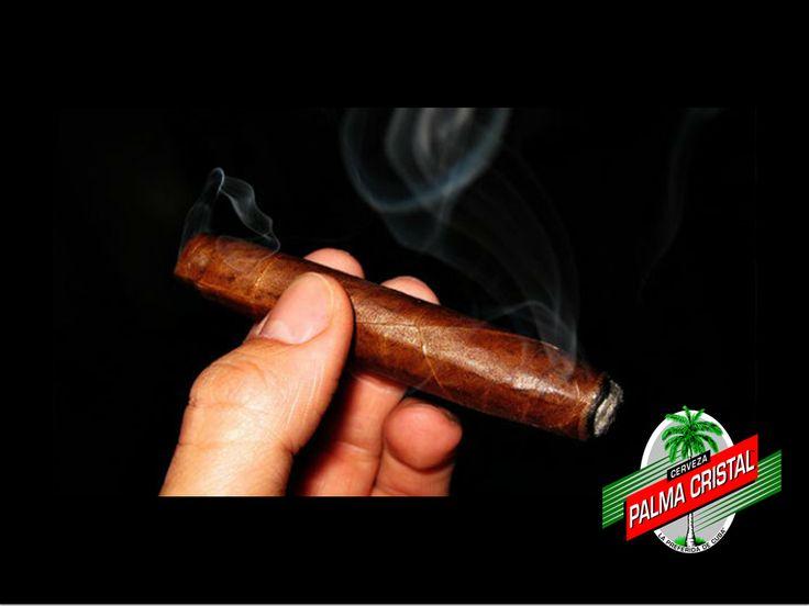 CERVEZA PALMA CRISTAL ¿Cómo se debe fumar un puro o habano? Hay quienes fuman puro sin saber que es todo un arte, por lo que para fumarlo se tiene que saber hacerlo. Aquí te dejamos un video de cómo se debe fumar un puro. https://www.youtube.com/watch?v=vJTXEd5sSls www.cervezasdecuba.com