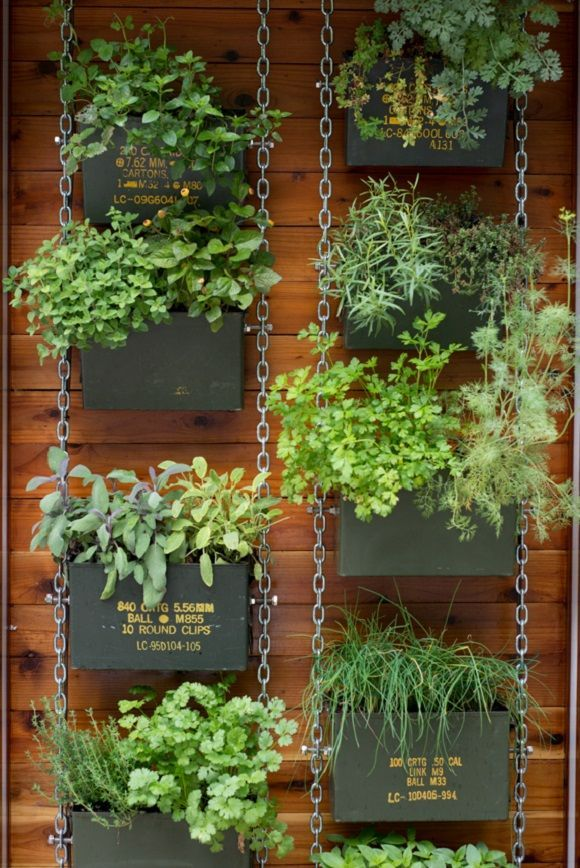 vertical gardening ideas with spicy herbs in your